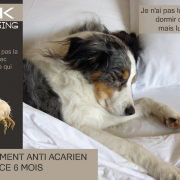 c2k-pressing-ecoresponsable-sud-vendee-fontenay-le-comte-traitement-anti-acarien